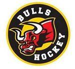 Exton Bulls logo