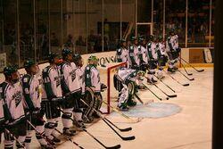 MichiganState hockey 2008