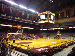 Williams arena ct