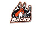 Breckenridge bucks logo