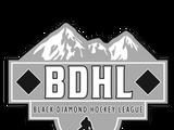 2018-19 BDHL Season