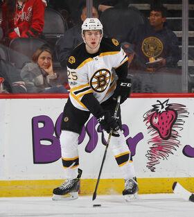 Brandon Carlo Bruins 2017.jpg