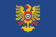 Trinec Flag