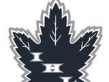 Interstate Hockey League
