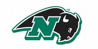 Nichols Bison