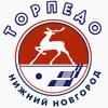 Niz logo