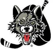 Spiritwood Timberwolves