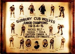 34-35Sudcubs