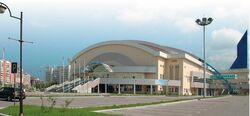 Arena Platinum