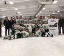 2017 Saskatchewan Senior Playoffs