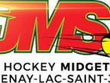 Saguenay-Lac-St-Jean Junior AA Hockey League