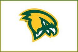 Fitchburg State Falcons logo