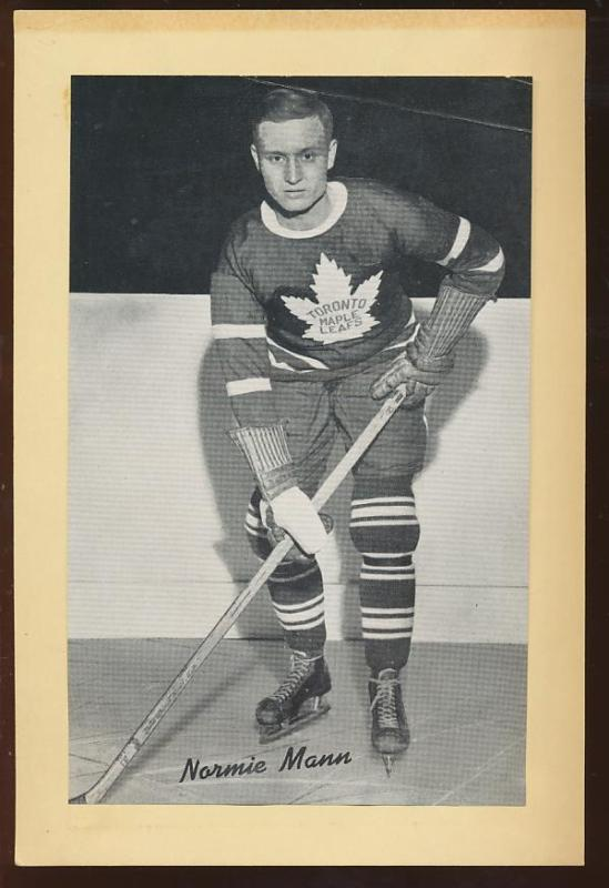 Norman Mann Ice Hockey Wiki Fandom Powered By Wikia