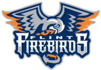 FlintFirebirds