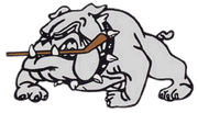 Dunnville Terriers