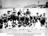 1928–29 Detroit Cougars season