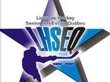 Ligue de Hockey Senior de l'Est du Quebec