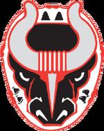 Birmingham Bulls (SPHL) logo