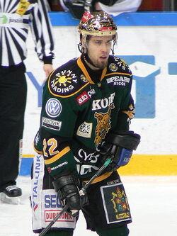Seikola Markus Ilves 2009 1