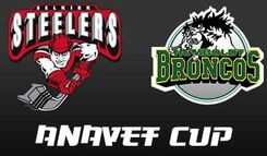 2007 ANAVET CUP LOGO