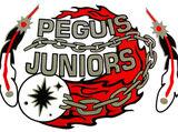 Peguis Juniors