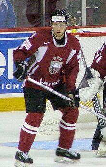 Arvids Rekis 2008
