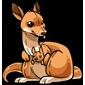 Cuddly Kangaroo Plushie