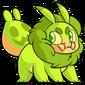 Krittle Green