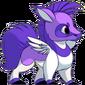 Zabeu Purple