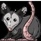 Cuddly Opossum Plushie
