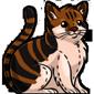 Big Fat Cat Plushie
