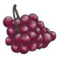 Organic Grapes Before 2015 revamp
