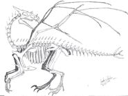 Prehistoric Dragon Skeleton by dragongirl00