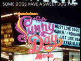 The Sunny Day Movie