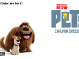 The Secret Life of Pets: Humans Know