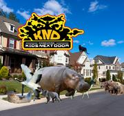 International Animal CKND Poster