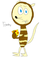 Tommy the Opossum (CTSB)