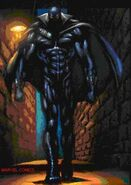BlackPanther (6)