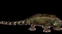 Green Iguana OS