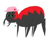 Dora the Spider