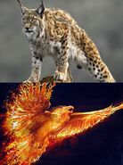 Maximal Heroes Lynx-19 and Phoenix-20