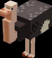Ostrich Mob