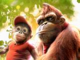 Donkey Kong (Live-Action Film)