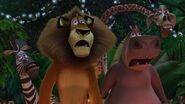 Madagascar 2005 2