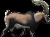 Pyrenean ibex (SciiFii)