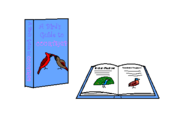 A Bird's Guide to Courtship Book