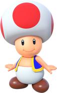 MSOSG Toad