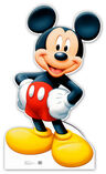 Mickey Mouse ( Character of Disney )