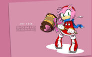 Amy Rose ( Sonic Channel version )