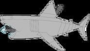 Mechanical great white shark pose 1c